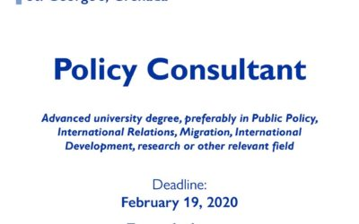 Vacancy Notice – Policy Consultant